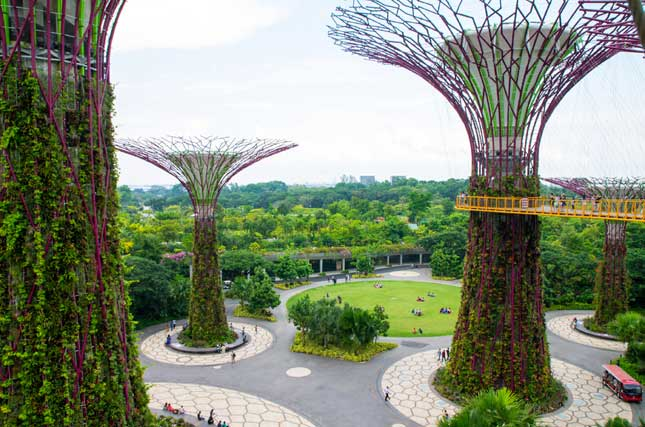 Singapore's Gardens by the Bay (Photo by M!cka)
