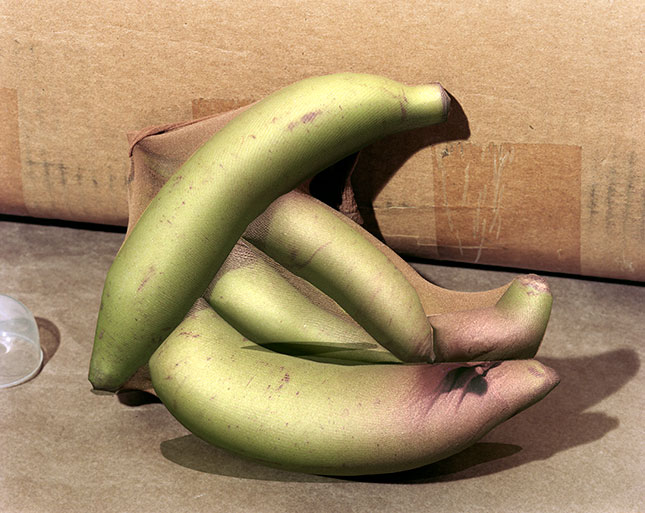 Lucas Blalock (1978-), Bananas, 2018. Archival inkjet print mounted on aluminum, 17 x 21 1/8 x 1-3/4 in. (43.2 × 53.7 × 4.4 cm). Image courtesy the artist; Galerie Eva Presenhuber, NY and Zurich; and Rodolphe Janssen, Brussels