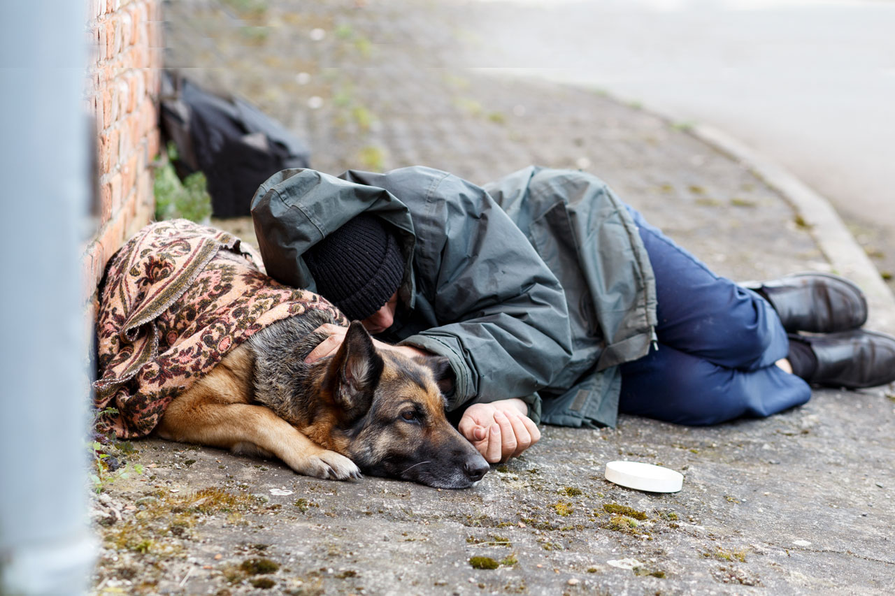 Courting Homelessness
