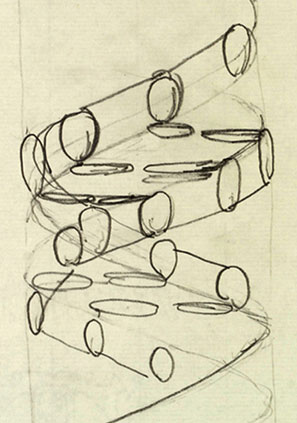 Francis Crick's 1953 sketch of the structure of DNA