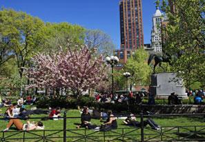 My Union Square