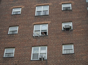 Dependency trap: the typical family in New York's public housing spends more than 20 years there.