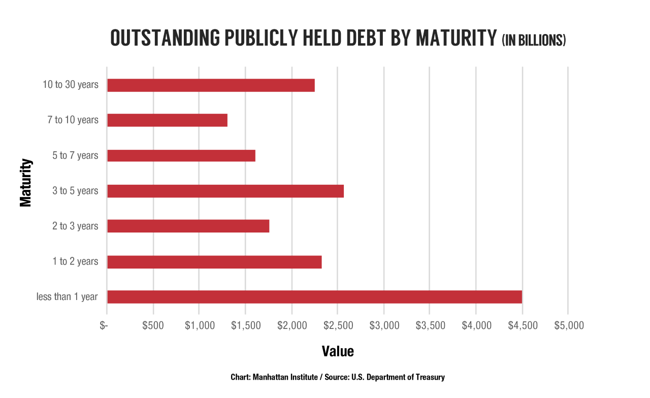 Public-Debt-Cost