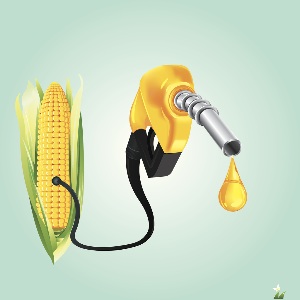 comparing gasoline ethanol and biodiesel which one is the best Using ethanol or biodiesel means less gasoline and diesel fuel is burned, which can reduce the amount of crude oil imported from other countries ethanol and .